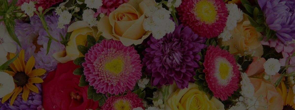 Colorful Flowers Header Image
