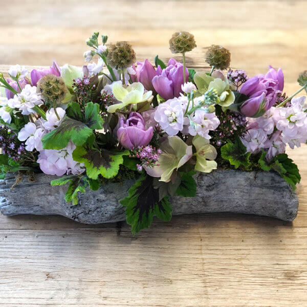 Purple Flowers in a Wooden Log